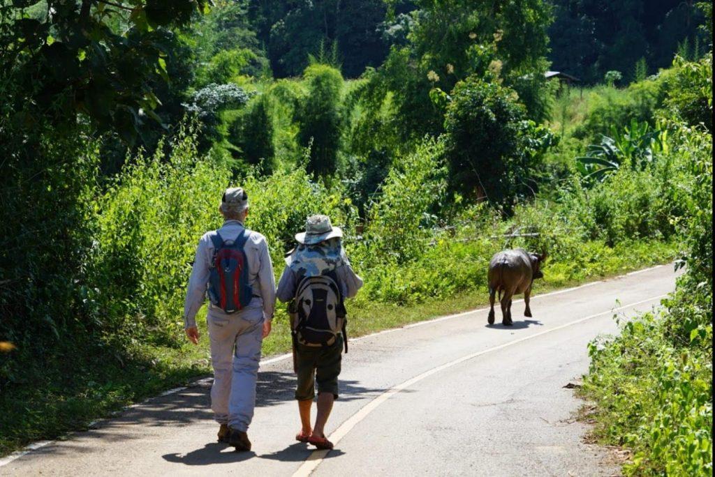 wandelen in Thailand