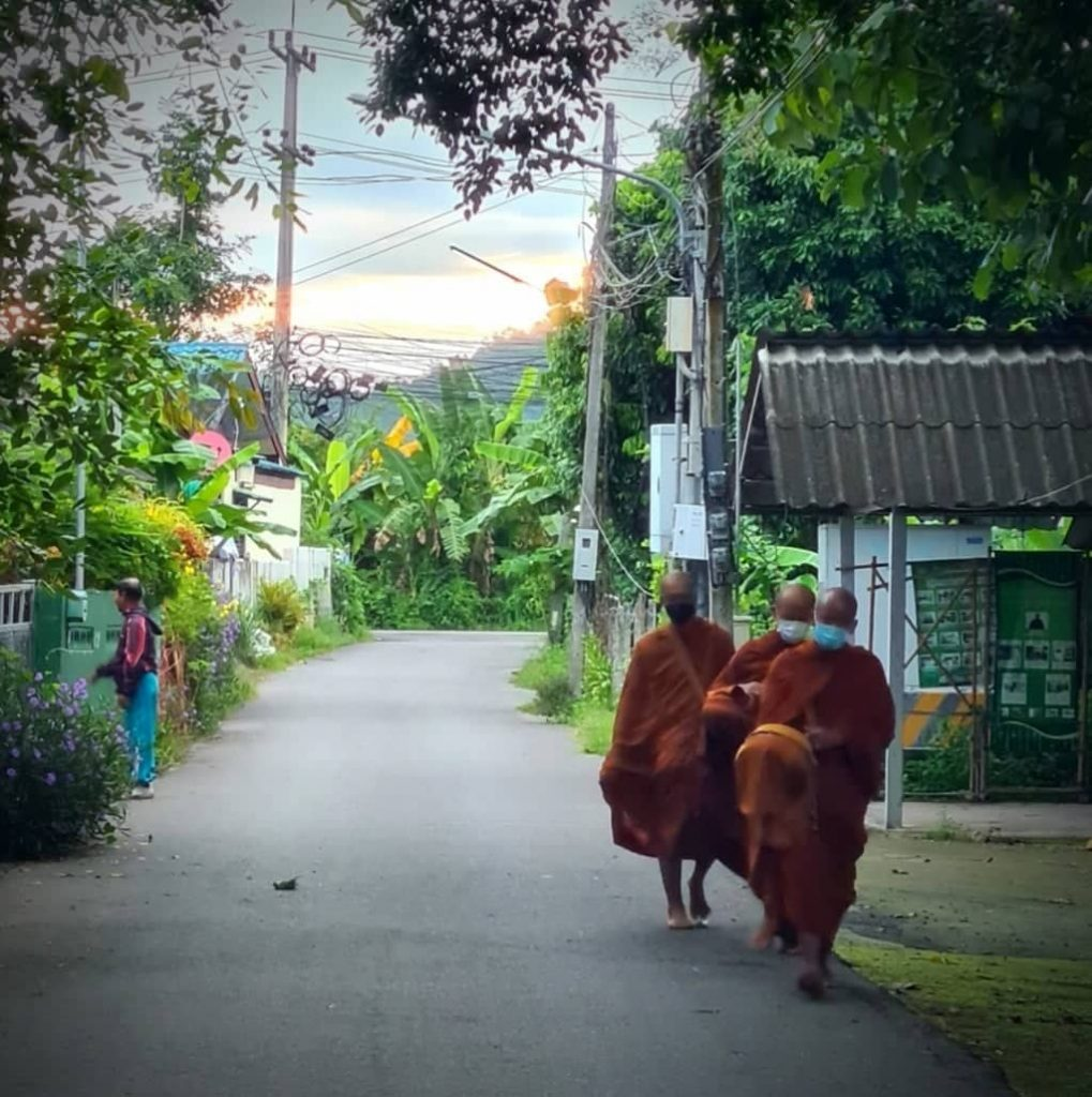 morning alms in Chiang Mai